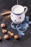 Milk and walnuts Stock Image