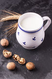 Milk and walnuts Royalty Free Stock Images