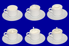 Milk in white cups on a blue background Stock Images