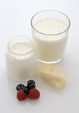 Milk, yoghurt and Cheese Royalty Free Stock Images