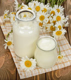 Milk, yogurt and chamomile Stock Image
