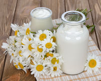 Milk, yogurt and chamomile Royalty Free Stock Images