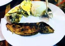 Milkfish och ostron i Filippinerna Royaltyfria Bilder