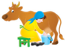 Milking dairymaid. Isolated clipart illustration of a dairymaid milking a brown cow Royalty Free Stock Photos