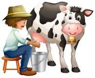 Milking Royalty Free Stock Photos
