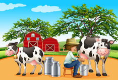 Milking Stock Photo