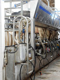 Milking machine Royalty Free Stock Photography