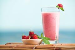 Milkshake поленики с мятой Стоковое Изображение