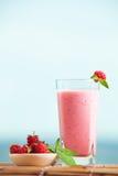 Milkshake поленики с мятой стоковая фотография rf