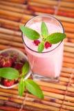 Milkshake поленики с мятой Стоковое Изображение RF