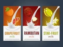 Milkshake concept with milk splash and fruit. Vector illustration. Milk dessert, yogurt, fruit mix, cocktail drink, fruit smoothie with grapefruit, rambutan Royalty Free Stock Photo