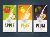Milkshake concept with milk splash and fruit Royalty Free Stock Photo