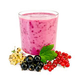 Milkshake with different currants Stock Image