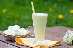 Milkshake, schuimgebakje, lilac boeket Stock Foto