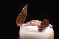 Milkshake z czekoladą Zdjęcie Stock