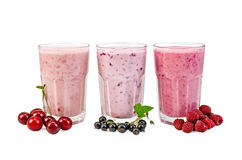 Milkshakes with berries in glasses Royalty Free Stock Photography