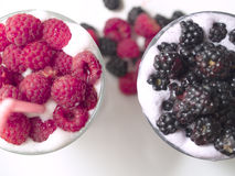 Milkshakes with Rasberries and Blackberries Stock Photos