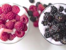 Milkshakes with Rasberries and Blackberries. Milkshakes made of vanilla ice cream, raspberries and blackberries stock photos
