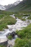 milky потоки Стоковая Фотография RF