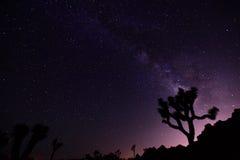 Milky путь Стоковые Изображения RF