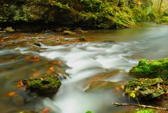 Milky Fall River. A milky stream captured in early fall showing water in motion Stock Images