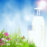 Milky season. Stock Images