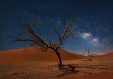 Milky sposób nad diuną 45 w Namibia brać w Styczniu 2018 obraz stock