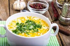 Milky vegetable суп диеты стоковые изображения rf