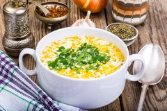 Milky vegetable суп диеты стоковая фотография