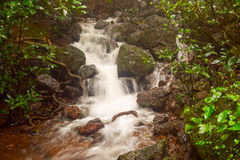 Milky waterfall on a small stream in Matheran hill station nestled in Sahyadri range of western ghat in Maharashtra Royalty Free Stock Photography