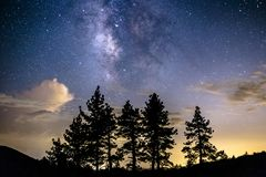 Milky Way above clouds and pine trees stock image
