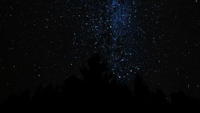 Milky Way above the Forest stock video