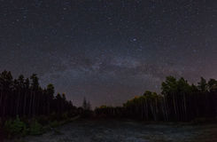 The Milky Way above the forest stock image