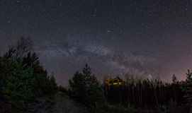 The Milky Way above the forest royalty free stock images