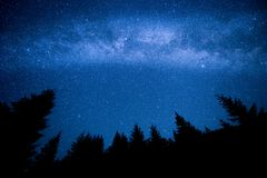 Milky Way above the night mountain forest Stock Images