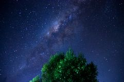 milky way blue stars sky tree leaf royalty free stock photos