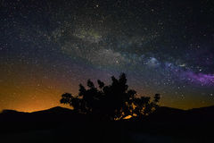 Milky way on a clear summer night Royalty Free Stock Images