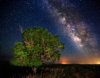 Milky Way In the Country Royalty Free Stock Photography