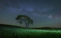 Milky Way in the famous Palouse region. A magical Milky Way in Palouse, Washington royalty free stock images