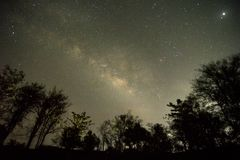 Milky way with fire flies. This photograph portraits Indian Monsoon nights with thousands and thousands of fire flies glowing on tree with milky way in the sky stock photo
