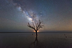 Milky Way Galaxy at Botany Bay Beach in South Carolina
