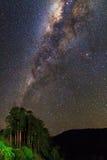 Milky way jungle Stock Photo