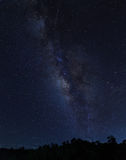Milky Way. Nice stars in blue sky night time scene with milky way and the forest stock photography