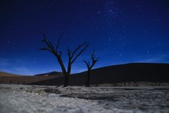 The Milky Way and the night sky over the Namib Desert, Sosusfleu Park. royalty free stock image
