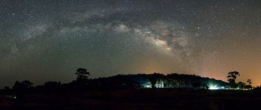 Milky Way over foreast Royalty Free Stock Photography