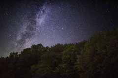 Milky Way over forest, Germany Stock Photos