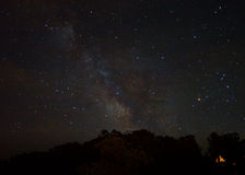 Milky Way over the Forest Royalty Free Stock Photography