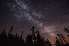 Milky way over forest. Wonderful milky way taken over forest in Å umava mountains in Czech republic royalty free stock photography