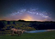 The Milky Way Panoramic View Royalty Free Stock Photos
