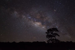 Milky Way at Phu Hin Rong Kla National Park,Phitsanulok Thailand Royalty Free Stock Images